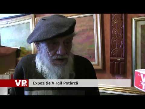 Expoziție Virgil Potârcă
