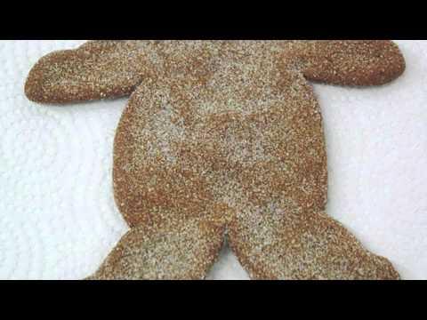 Ceci Cela  Gingerbread Man • Filmmaker Mark Fisher • New York Promo