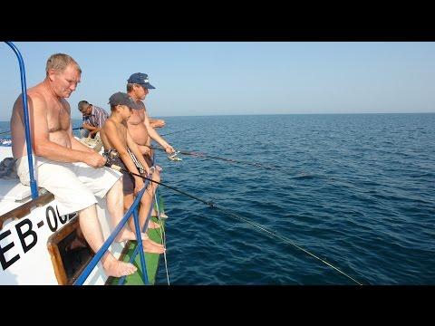 платная рыбалка в крыму на море