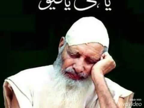 Video Sufi barkat ali...my lovely murshad... download in MP3, 3GP, MP4, WEBM, AVI, FLV January 2017