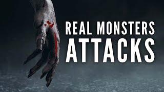 Video 5 Monster Attacks That Happened in Real Life. MP3, 3GP, MP4, WEBM, AVI, FLV November 2018