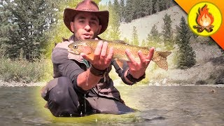 Catching Trout...THE HARD WAY! by Brave Wilderness