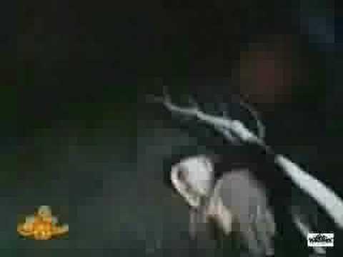 Video CPV - De cacería