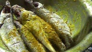 Video Sea Fish Fry | Street Food In Orissa/Puri/India | Varieties of Fish Selling in Sea Beach MP3, 3GP, MP4, WEBM, AVI, FLV Juni 2018