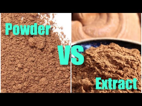 MUSHROOM POWDERS VS EXTRACTS: WHAT'S THE DIFFERENCE?