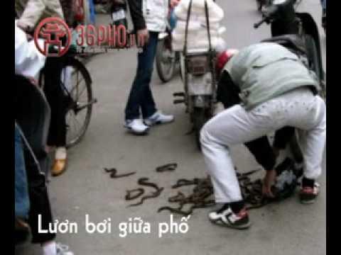 Chỉ có ở Hà Nội (clip vui) - 36pho.vn