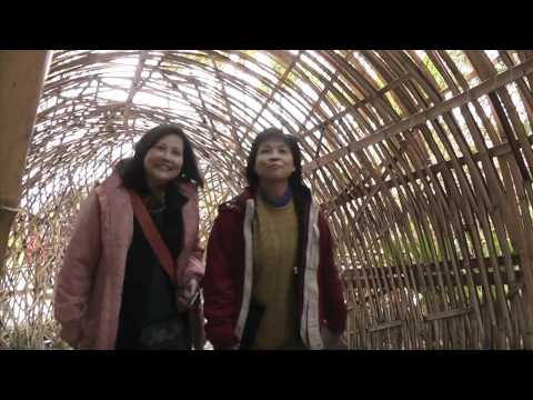 Forty second tour of the Taipei Flora Expo