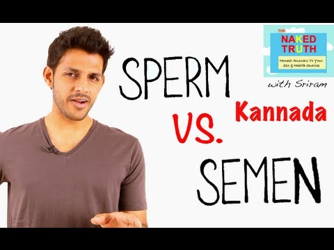 Video What is the Difference between Sperm and Semen - Kannada download in MP3, 3GP, MP4, WEBM, AVI, FLV January 2017