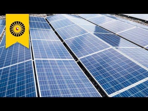 Biggest solar park in Utrecht opened