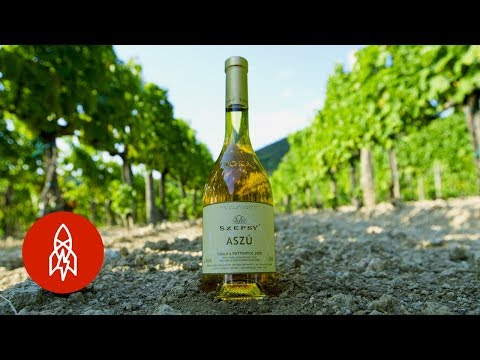 How 'Rotten' Grapes Become Hungary's Transcendent Tokaji Wine_Magyarország, Budapest. Heti legjobbak