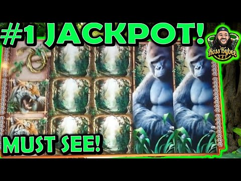 Queen of the Wild $25 Mega bonus Mega Jackpot