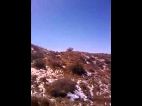 Horseback Riding Tonto National Forest Arizona