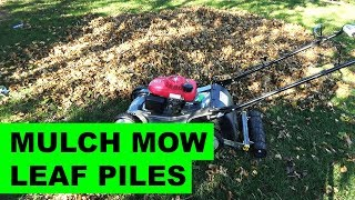 8. Mulch Mowing Piles of Leaves with the Honda HRX217