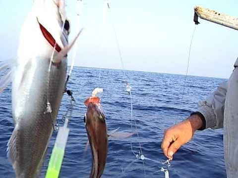 ψαρεμα μουσμουλια μιμης-νεκ-τεο