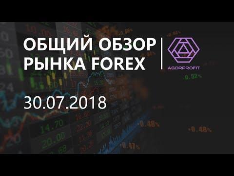 Общий обзор рынка форекс на 30.07.2018 - DomaVideo.Ru