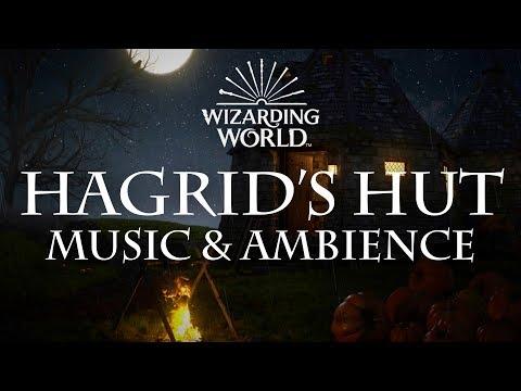 Harry Potter Music & Ambience | Hagrid's Hut