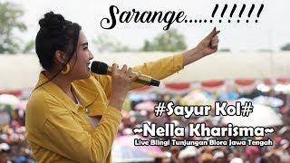 Video Sayur Kol - Nella Kharisma Lagista Live Blingi Tunjungan Blora Jawa tengah MP3, 3GP, MP4, WEBM, AVI, FLV Maret 2019