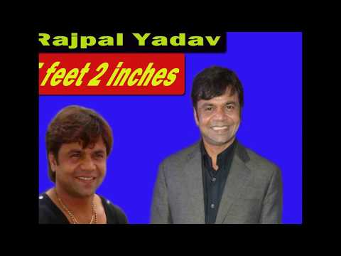 Video Height of Bollywood Actors Top 20 | Bollywood Actors | Bollywood Actress and their Heights download in MP3, 3GP, MP4, WEBM, AVI, FLV January 2017