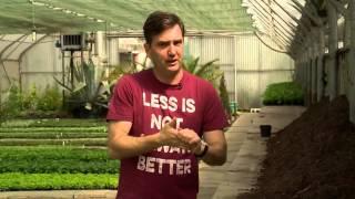 Egynyári növények tápanyagigénye - Kertbarátok - Kertészeti TV - műsor