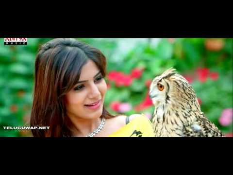 Video Cycle se aaya (sameer m. 9937310081) download in MP3, 3GP, MP4, WEBM, AVI, FLV January 2017