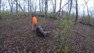 Nonton Deer Hunting 2016 - Deer camp - #3 The hunt Film Subtitle Indonesia Streaming Movie Download