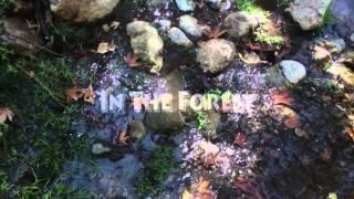 Video Samothraki (Samothrace) Magical Trip - 2013 MP3, 3GP, MP4, WEBM, AVI, FLV Oktober 2017