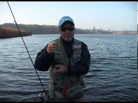 бухтарминское водохранилище запреты на рыбную ловлю