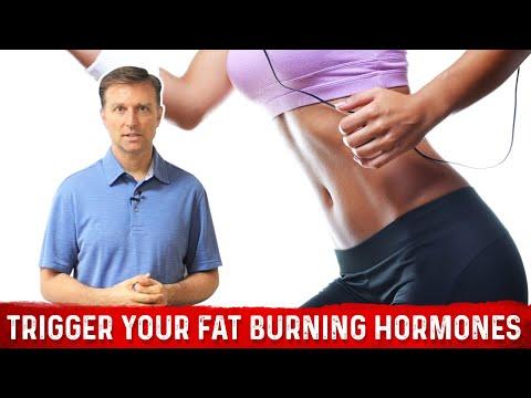 Trigger Your Fat Burning Hormone: GLUCAGON