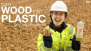 How to make plastic from trees (and not fossil fuels)    #TeamTrees by Sally Le Page