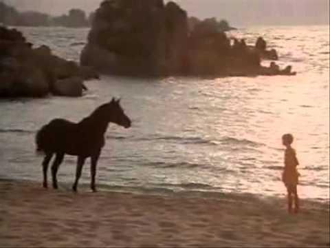 The Black Stallion 01