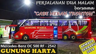 Video NAIK BUS TERBARU GUNUNG HARTA | Surabaya ke Bali MP3, 3GP, MP4, WEBM, AVI, FLV September 2018