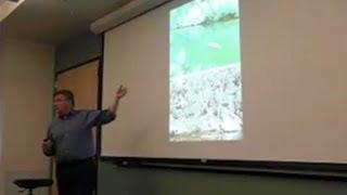 Art Of The Anthropocene