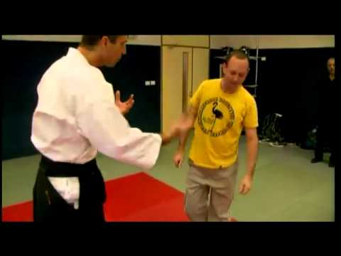 How to succeed in six lessons - Aikido lesson