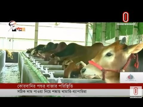 Sacrificial animal market preparation (07-07-2020) Courtesy:Independent TV