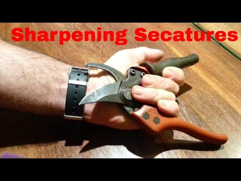Sharpening Secateurs