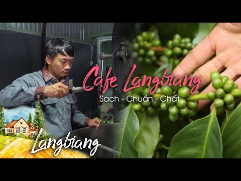 TVC Cafe Langbiang