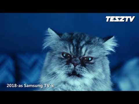 TeszTV hírek 2018/10 hét