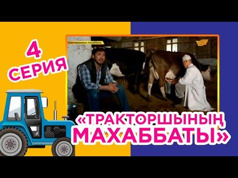 Тракторшының махаббаты (4-бөлім)