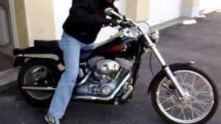 6. Harley Davidson Softail Standard  (custom) 2005 FXSTI with screaming eagle