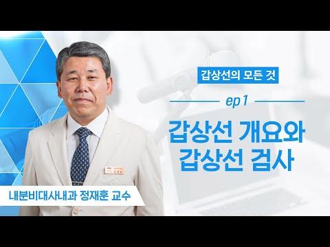 갑상선 개요와 검사법