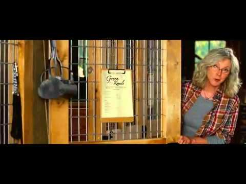 The Lucky One - Official Trailer