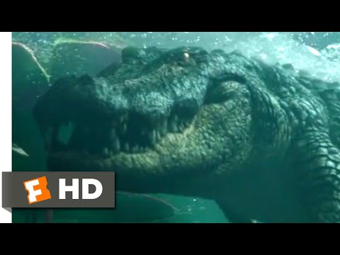 Crawl (2019) - Swimming Through the Pipe Scene (6/10) | Movieclips