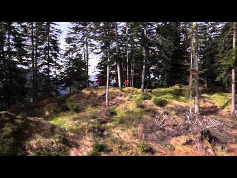 SCOTT Genius LT 2014 –  All mountain bike