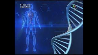 Santé MAG : jeûne et maladies Chroniques