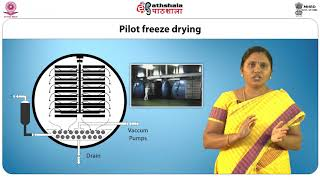 Freeze Drying and Rotary Drying Process