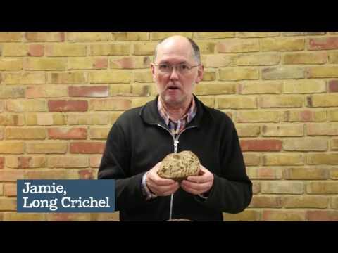 Malted 5 Seed Sourdough Bread, Long Crichel (400g)