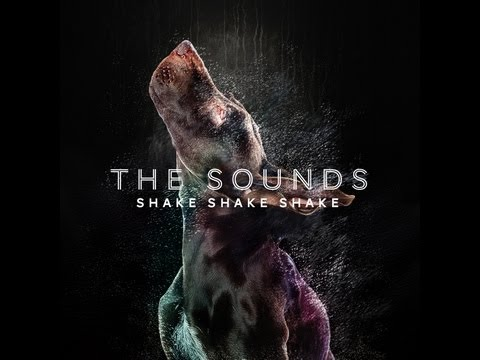 Shake Shake Shake (Song) by The Sounds