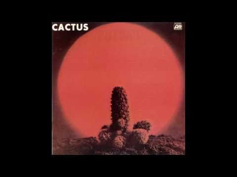 Tekst piosenki Cactus - Bro. Bill po polsku