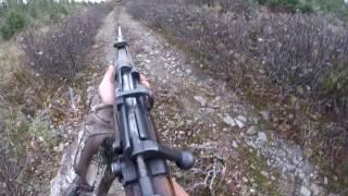 Video Newfoundland gopro moose hunt (open sights) MP3, 3GP, MP4, WEBM, AVI, FLV Oktober 2017