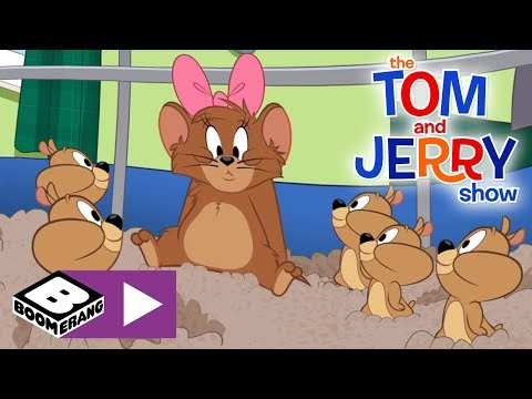 The Tom and Jerry Show | 10,000 Hamster Pups | Boomerang UK